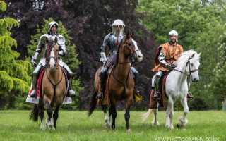 Дестриэ — лошади тяжеловесы