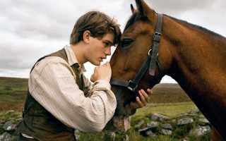 Фильмы про лошадей: список лучших фильмов про лошадей