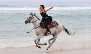 Как заставить лошадь идти рысью