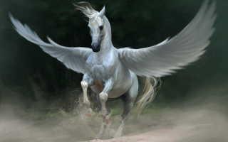 Знаменитые лошади