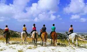Пафос, Кипр: что посмотреть туристу?