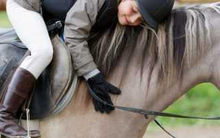 Детская верховая езда