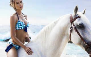 Уход за лошадями