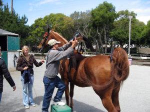 Седловка лошади