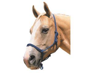 Недоуздок на лошади