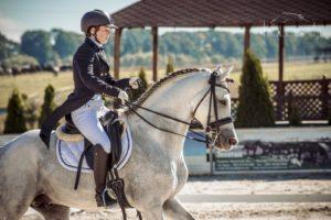 Снаряжение коня и тренира