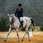 Езда верхом на коне