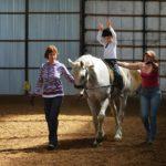 Лошадь со специальным седлом для иппотерапии
