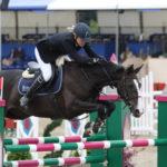 Конь на соревнованиях