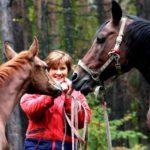 Знакомство с лошадьми
