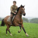 Скачки на коне
