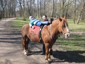 Конь лекарь