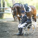 Лошади так же лечат нарушения двигательного аппарата