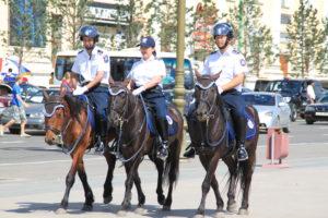 Лошади полицейские