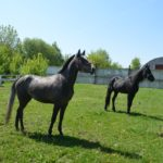 Две серой лошади
