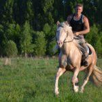 Лошадь для верховой езды