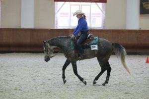 Конь терской породы
