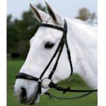 Вид уздечки для лошади