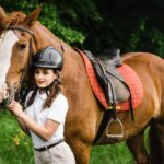 Привыкание коня к человеку