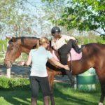 Как правильно садиться на коня