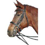 Трензельная уздечка для лошади