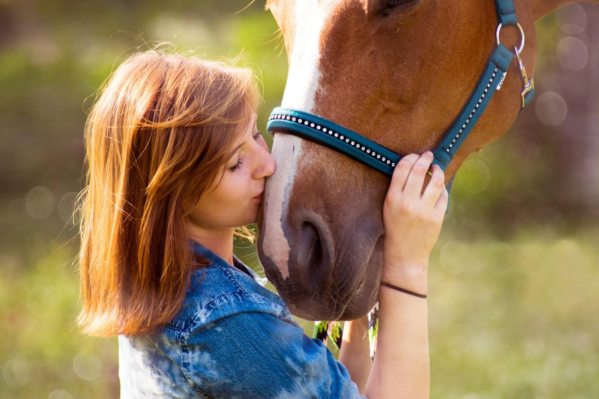 Взаимодействие с лошадью