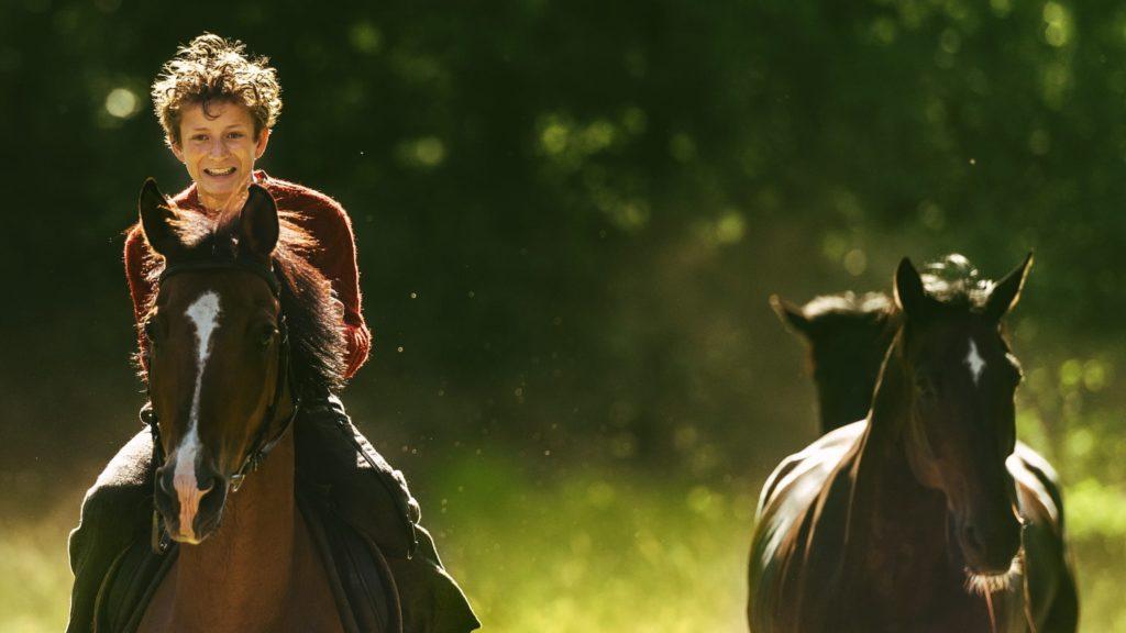 фильм угоняя лошадей сюжет