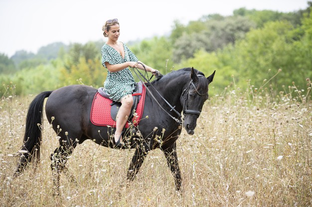 riding-girl-are-walking-with-her-black-horse_87557-18907